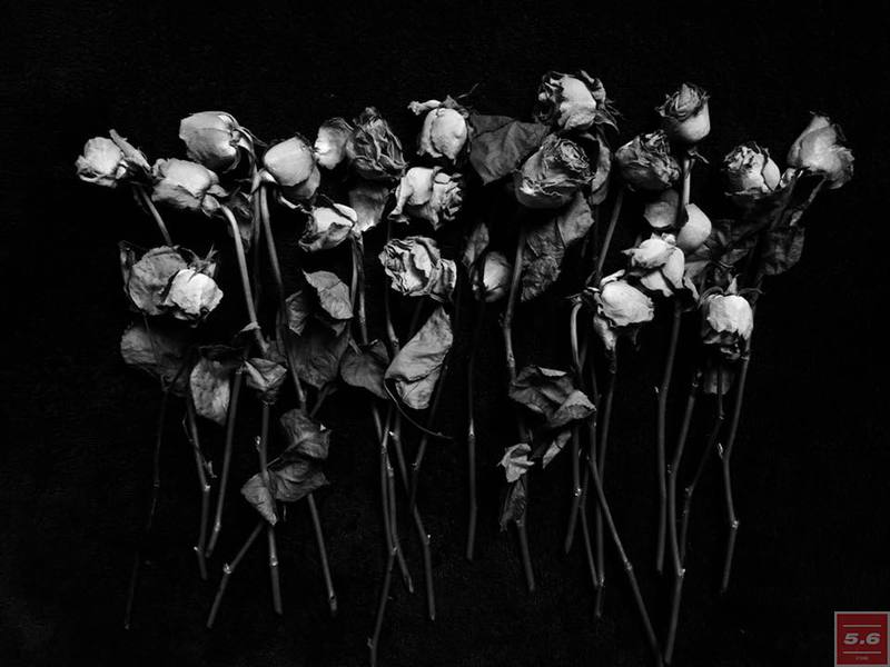 "Науменко Виктория, ""Roses from Marushchenko"",из серии «from series ""Even Dying Still Beautiful"""