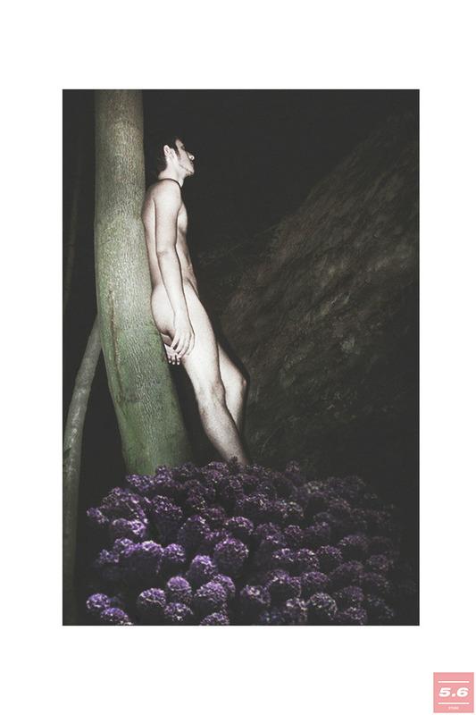 Солоп Ярослав, In Memory of Hyacinth